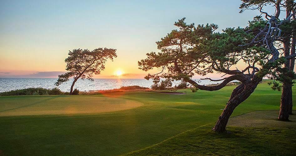 Nya golfregler 2019